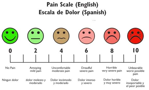 picture relating to Pain Scale Chart Printable named Soreness Scale within English and Spanish College student Nurse Laura